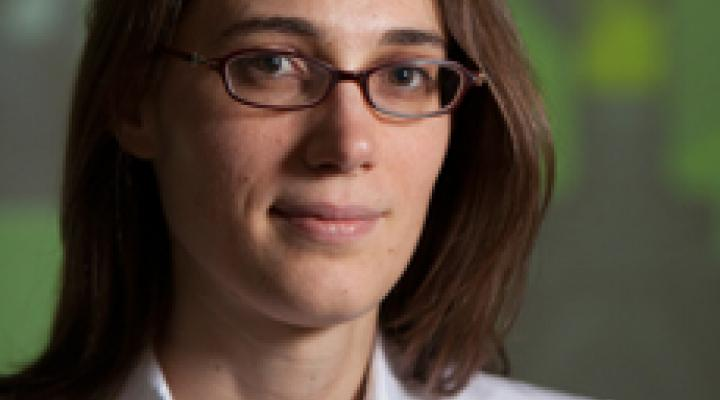 Assistant Professor, Perrine Pepiot